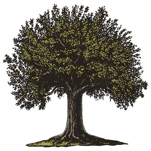 Simpson Estate and Elder Law
